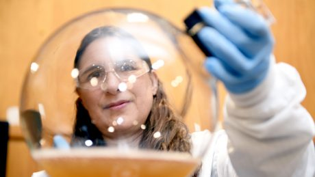 CALS BAE nontraditional student Alison Deviney gazes through a large, round glass beaker while wearing blue gloves and safety goggles.