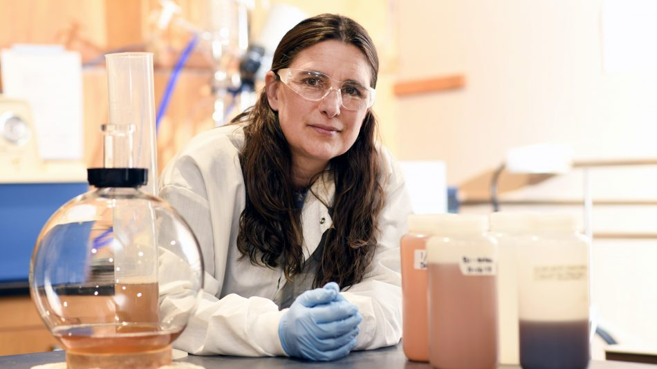 CALS BAE nontraditional student Alison Deviney leans on the counter in her lab, wearing a white lab coat, blue gloves and safety goggles.