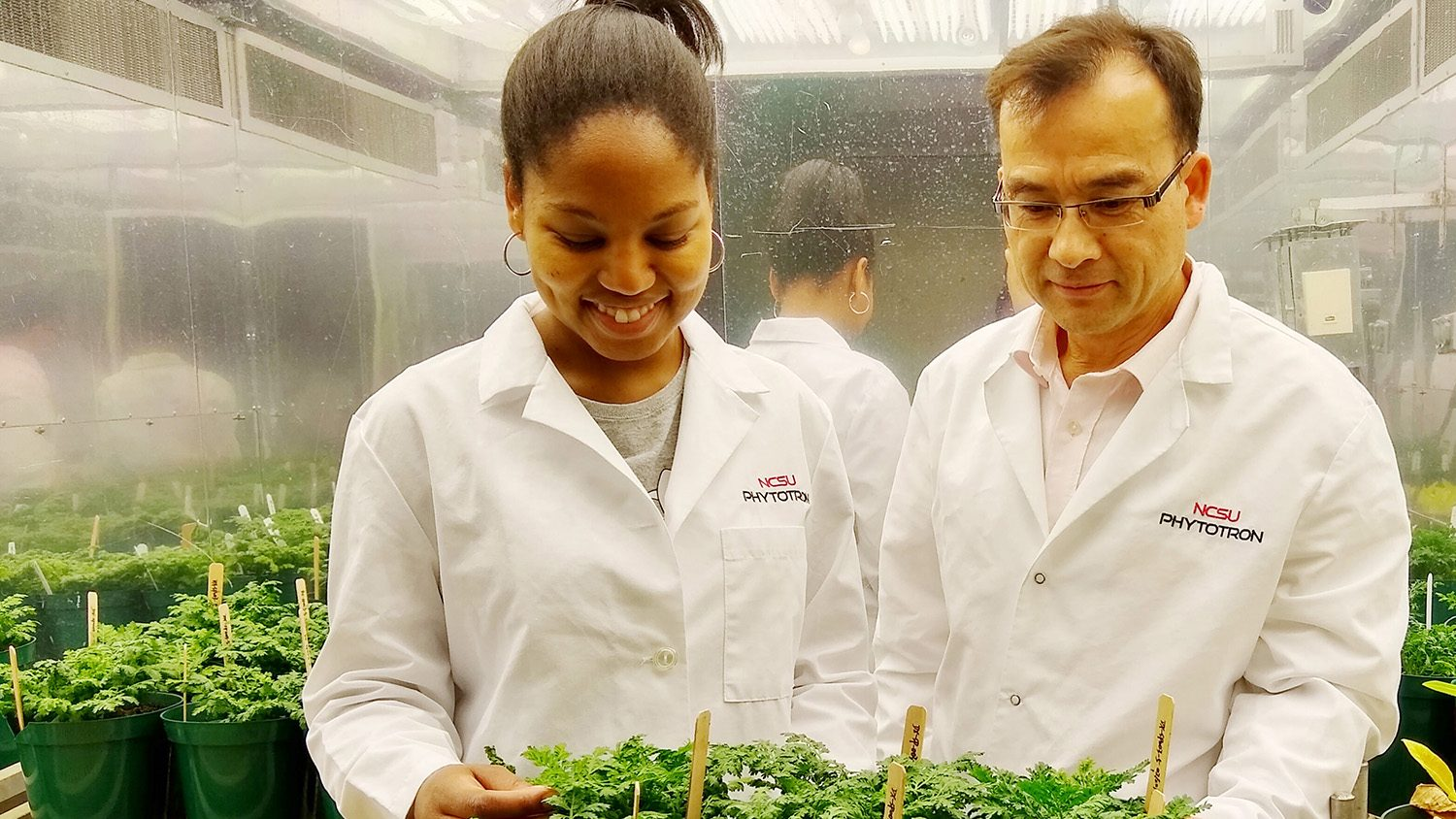Researchers in white lab coats looking at plants in NC State's Phytotron