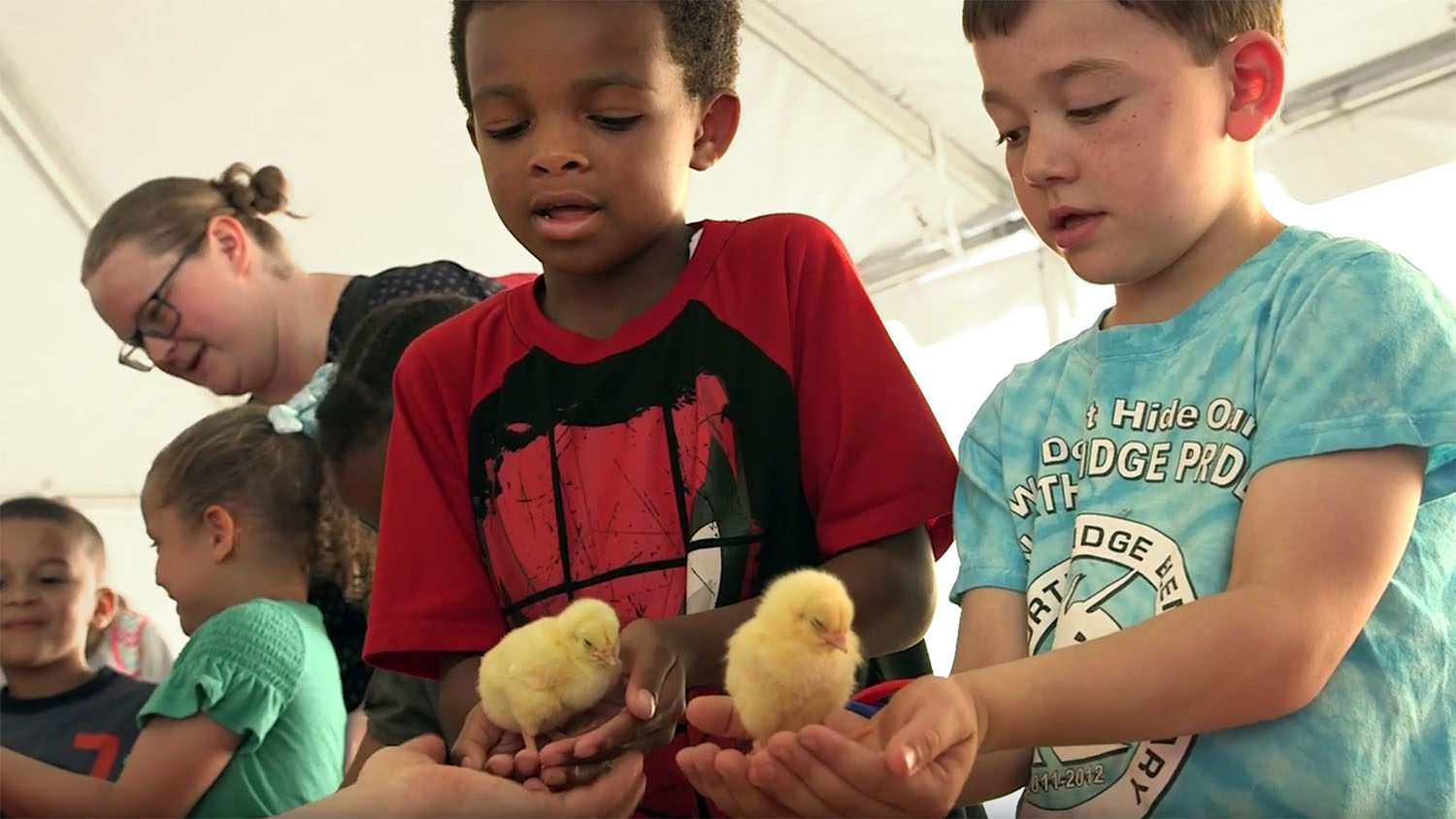 Two children holding two chicks