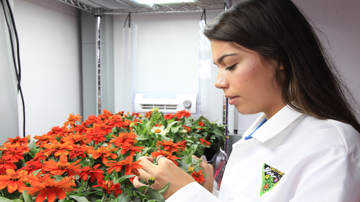 Woman in lab coat with zinnias.