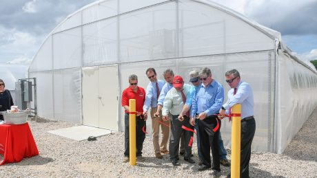 CALS administrators and partners cutting a red ribbon to the new sweetpotato greenhouses at NC State