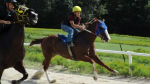 Quarter horse racing at Donal Gooch's Sports Arena. Brothers Michael and Marcus Lynch compete.