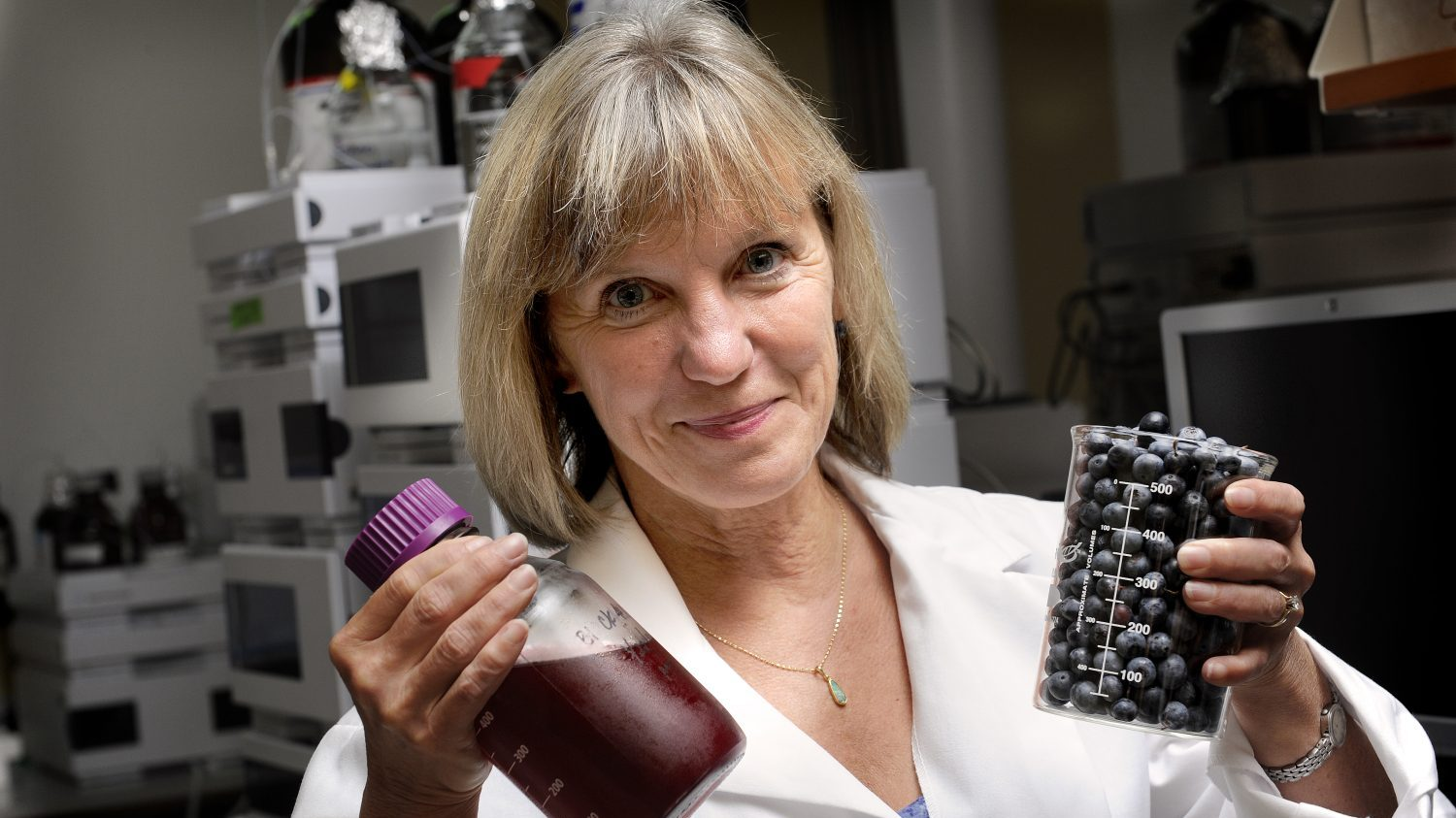 Professor in lab holding up blueberries and juice.
