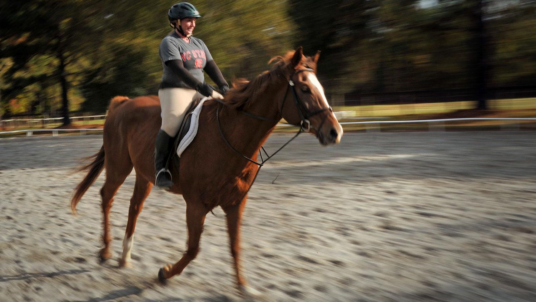 Woman wearing helmut on brown horse