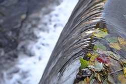 Close up of a water fall with red, yellow, green leaves at the edge.