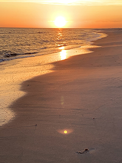 Photo of a beach with the sunset in background.
