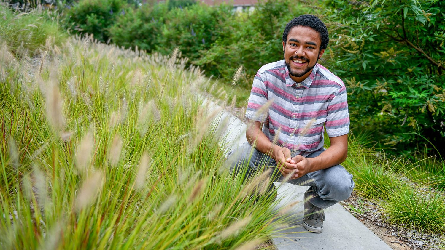 Student on a paved path, squatting down near ornamental grass.