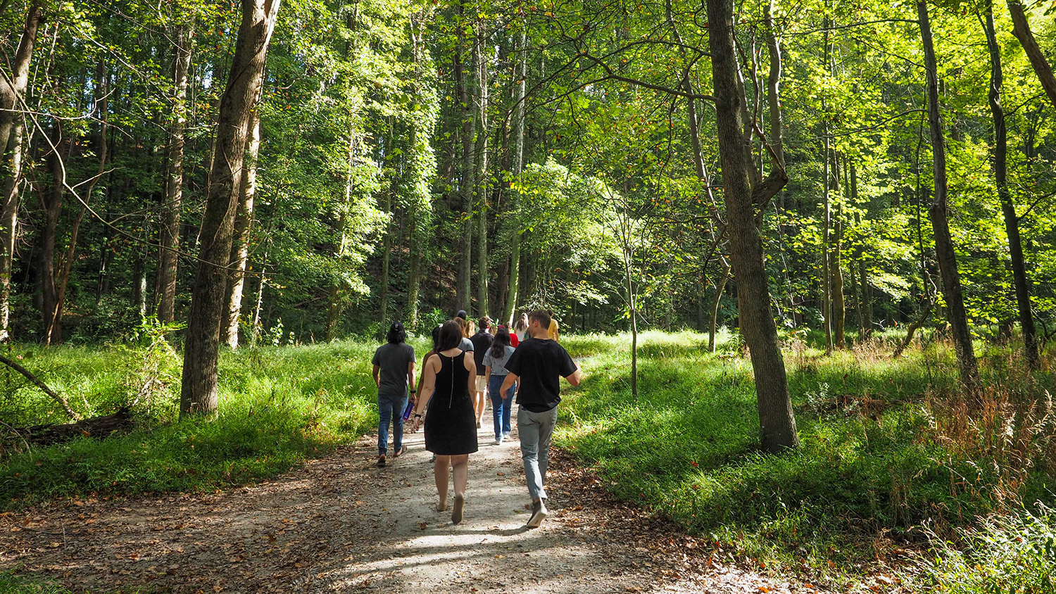 People walking along a nature trail