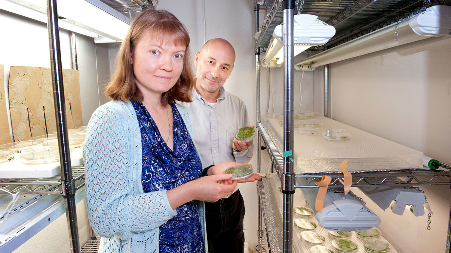 Anna Stepanova and Jose Alonso in a room for growing plants.