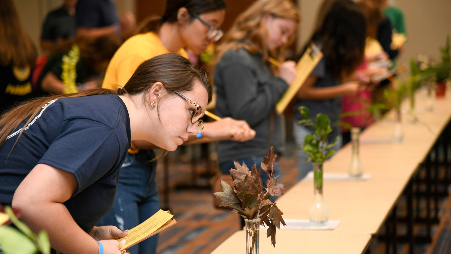 Young woman judging an FFA event