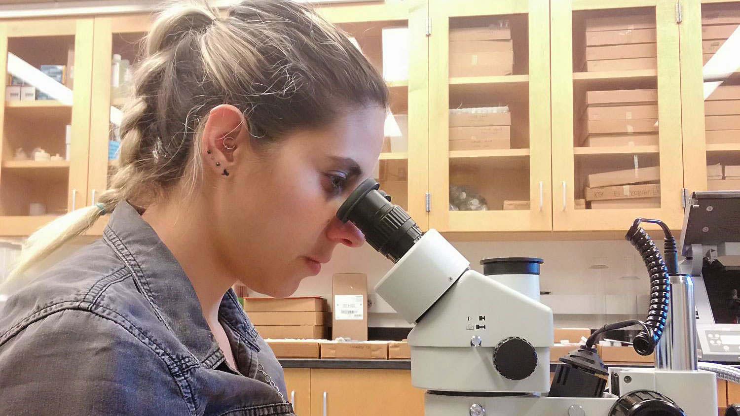 A female student looks through a microscope in a lab
