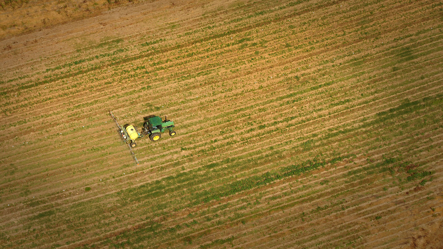 Aerial of tractor spraying fields at Lake Wheeler farms.