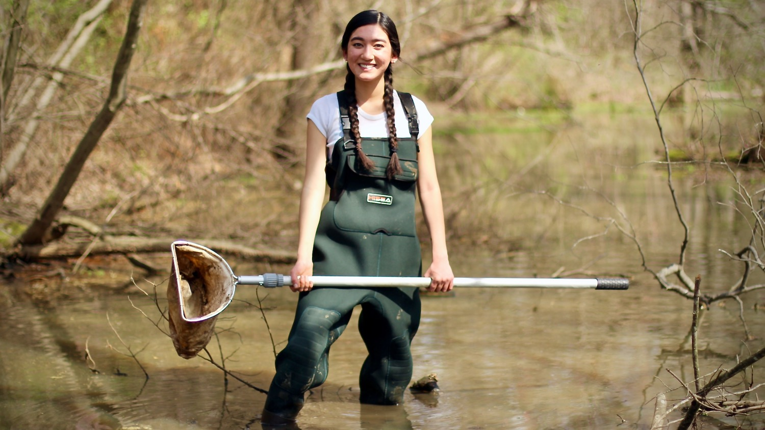 A young woman wearing waters stands in a pond holding a net.