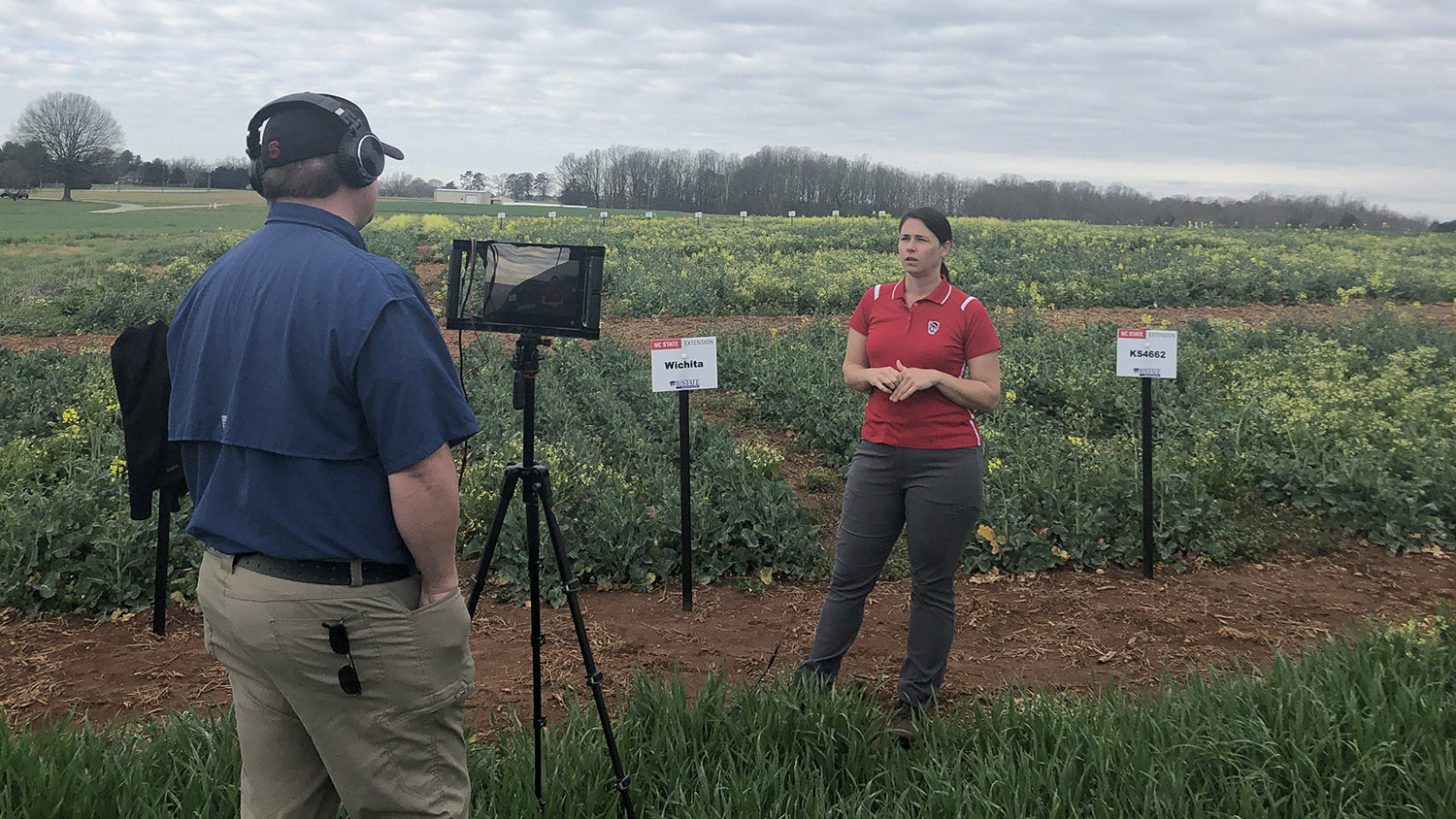 A videographer records a scientist discussing agricultural research at a field plot.