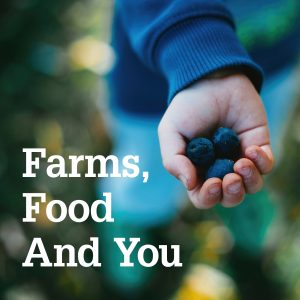 Farms, Food and You text on photo of child's hand holding three large blueberries