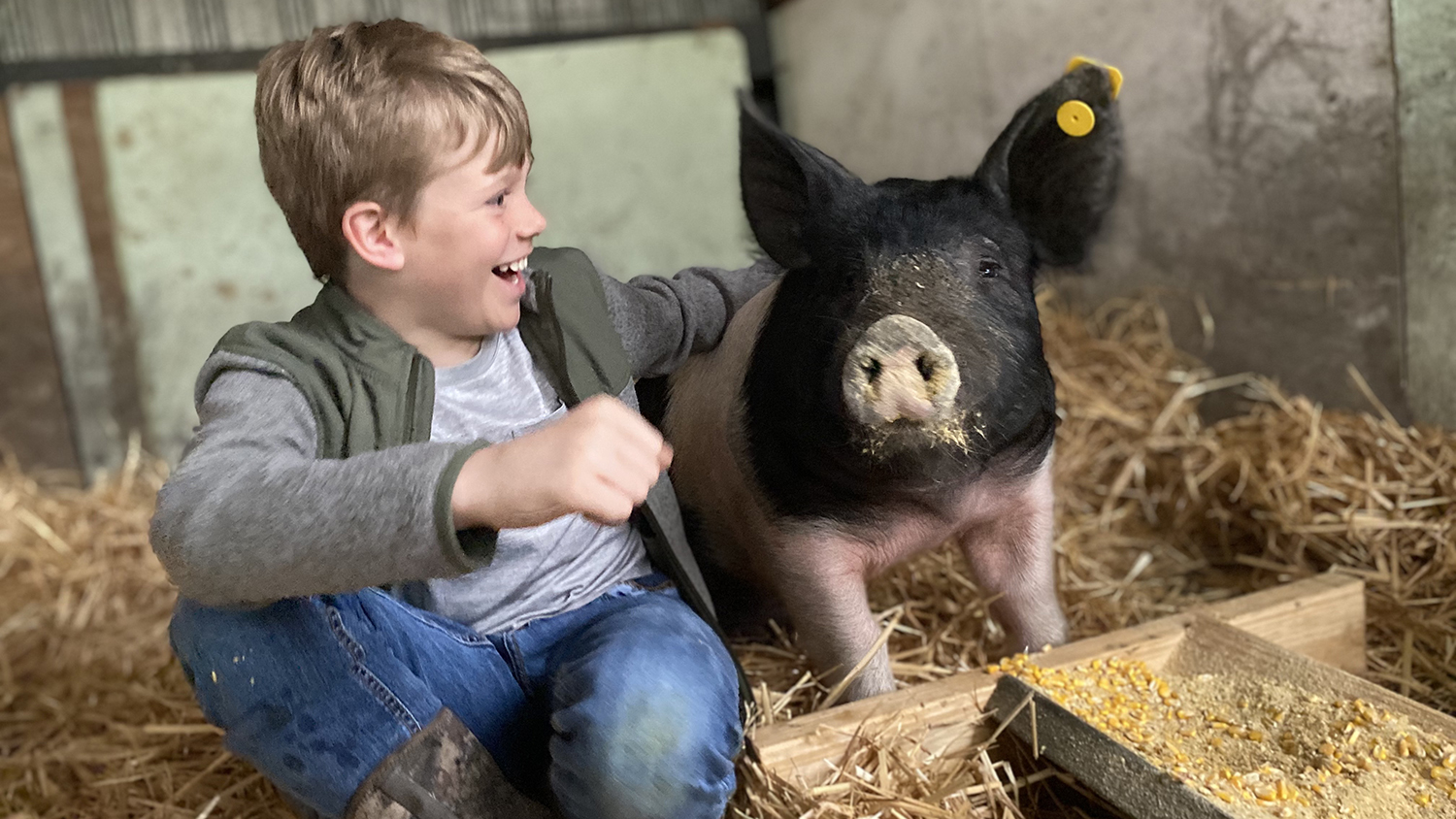 Smiling child with his arm around a pig