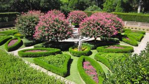 beautiful American garden