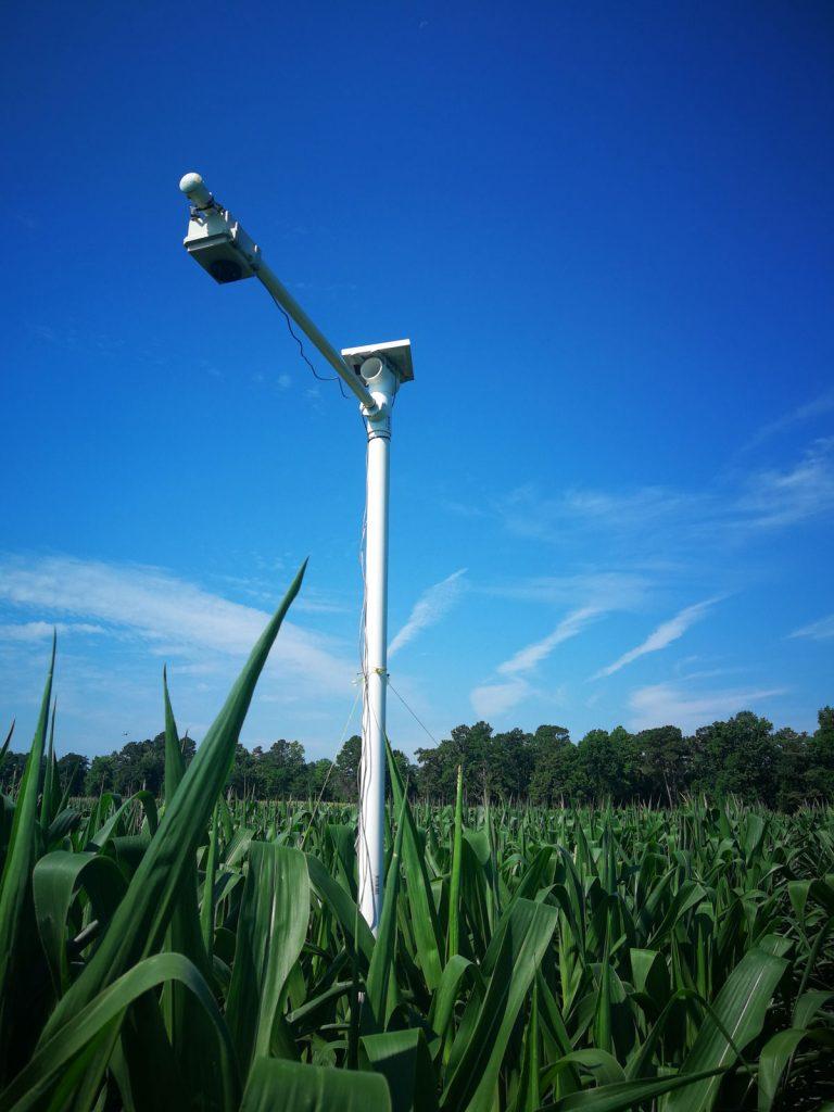 StressCam over corn field