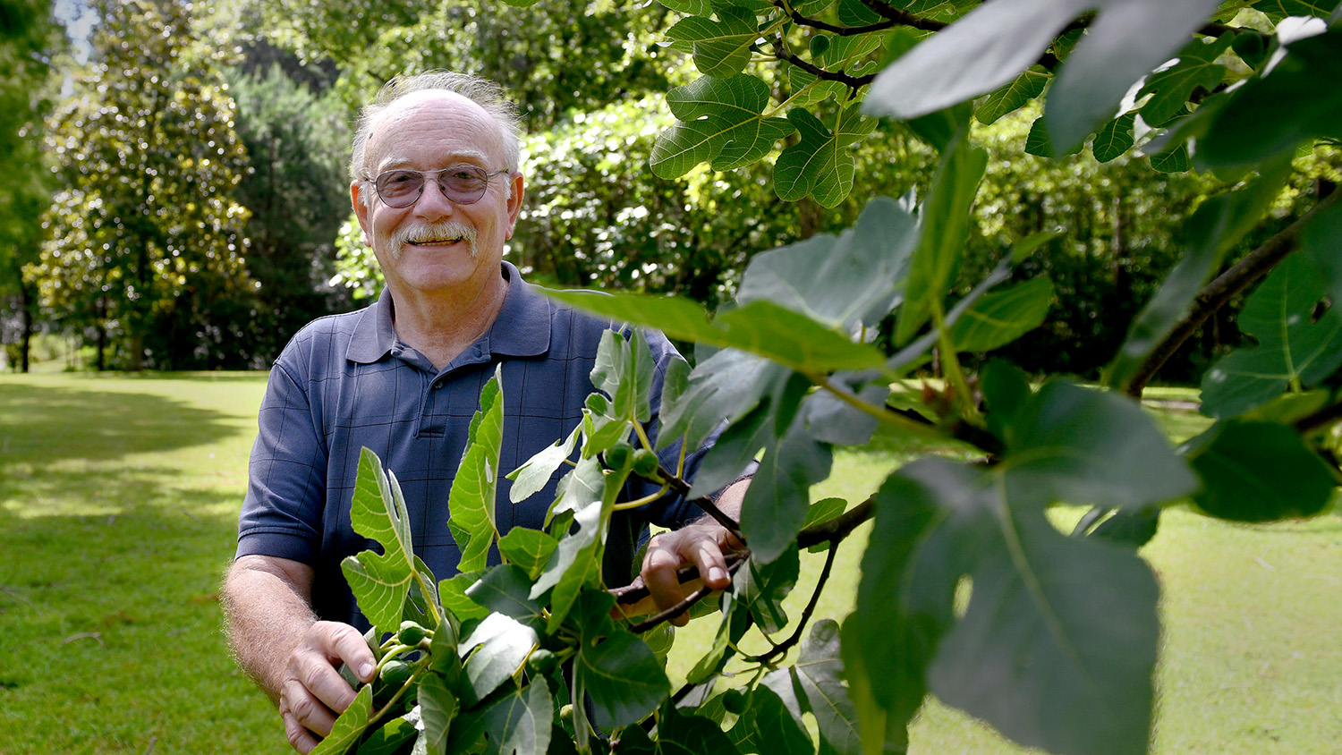 Man holding a fig branch