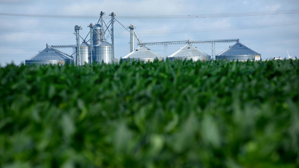 silos in the background of a farm