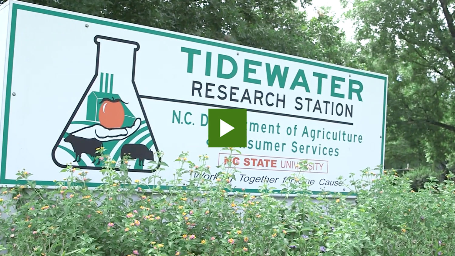 Sign for the NC State Tidewater Research Station