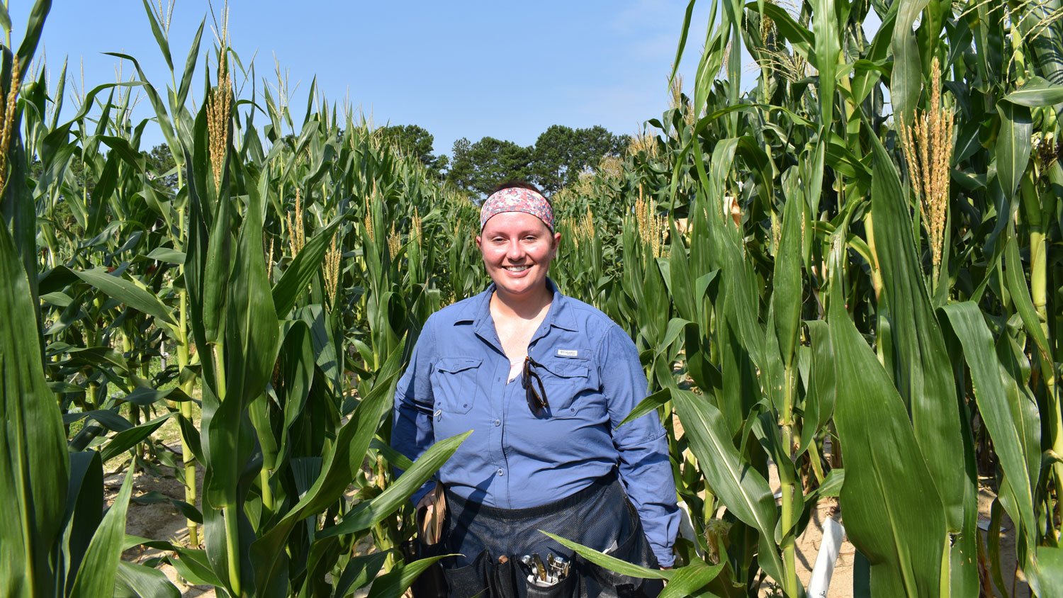 A young white woman in the middle of a maize field.