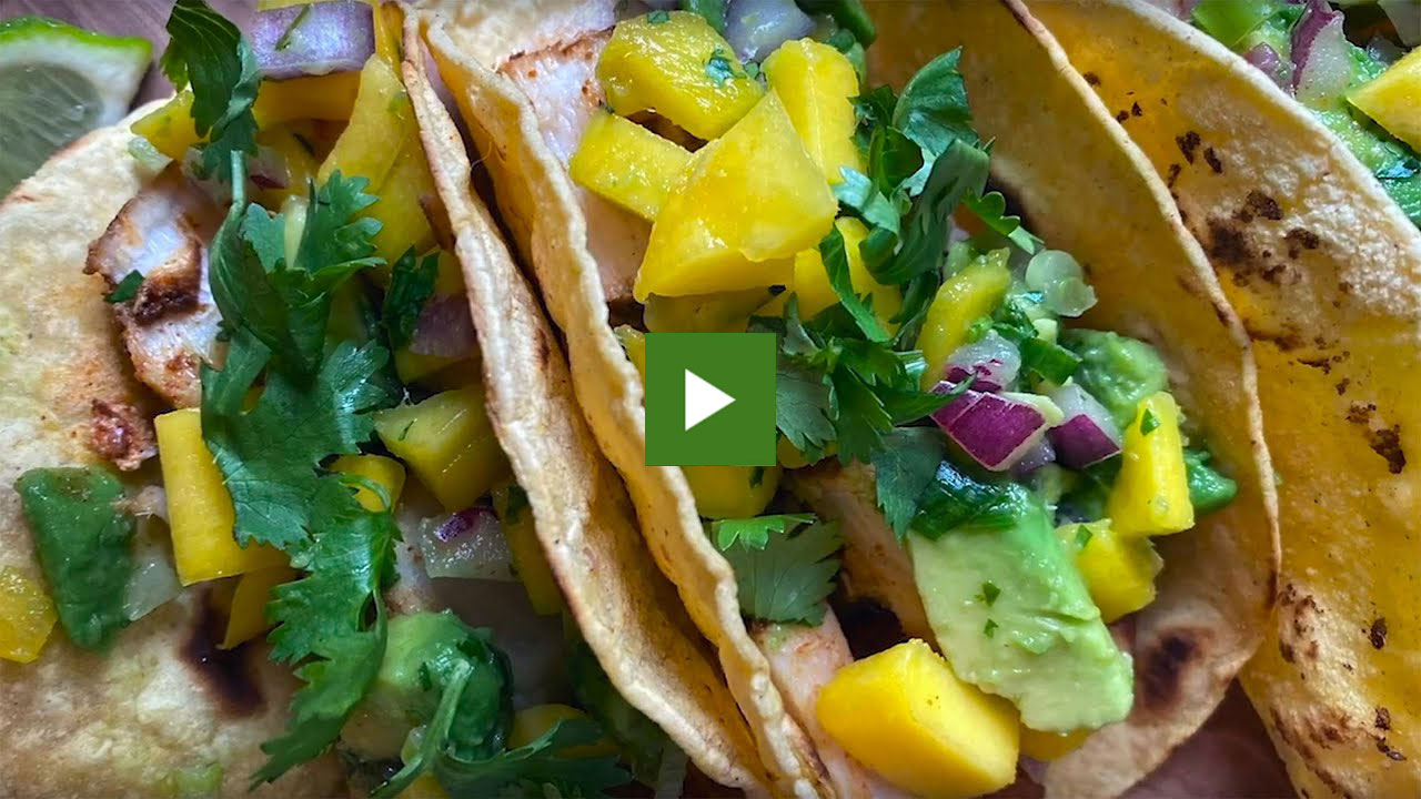 Fish tacos withe avocado-mango salsa and garnished with cilantro