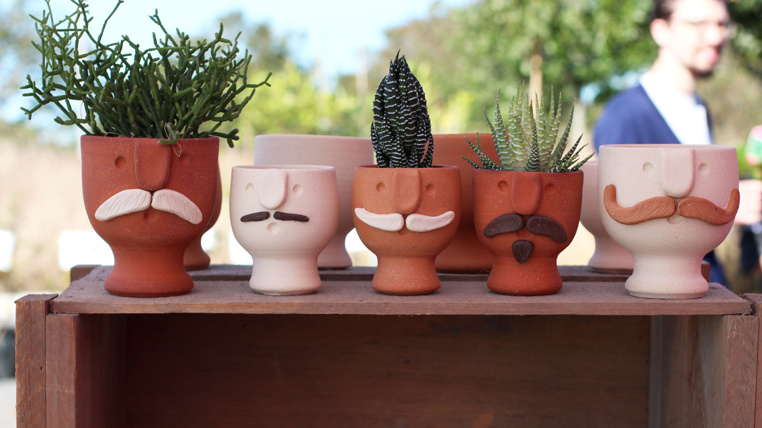 A row of potted plants. The pots have faces with mustaches.