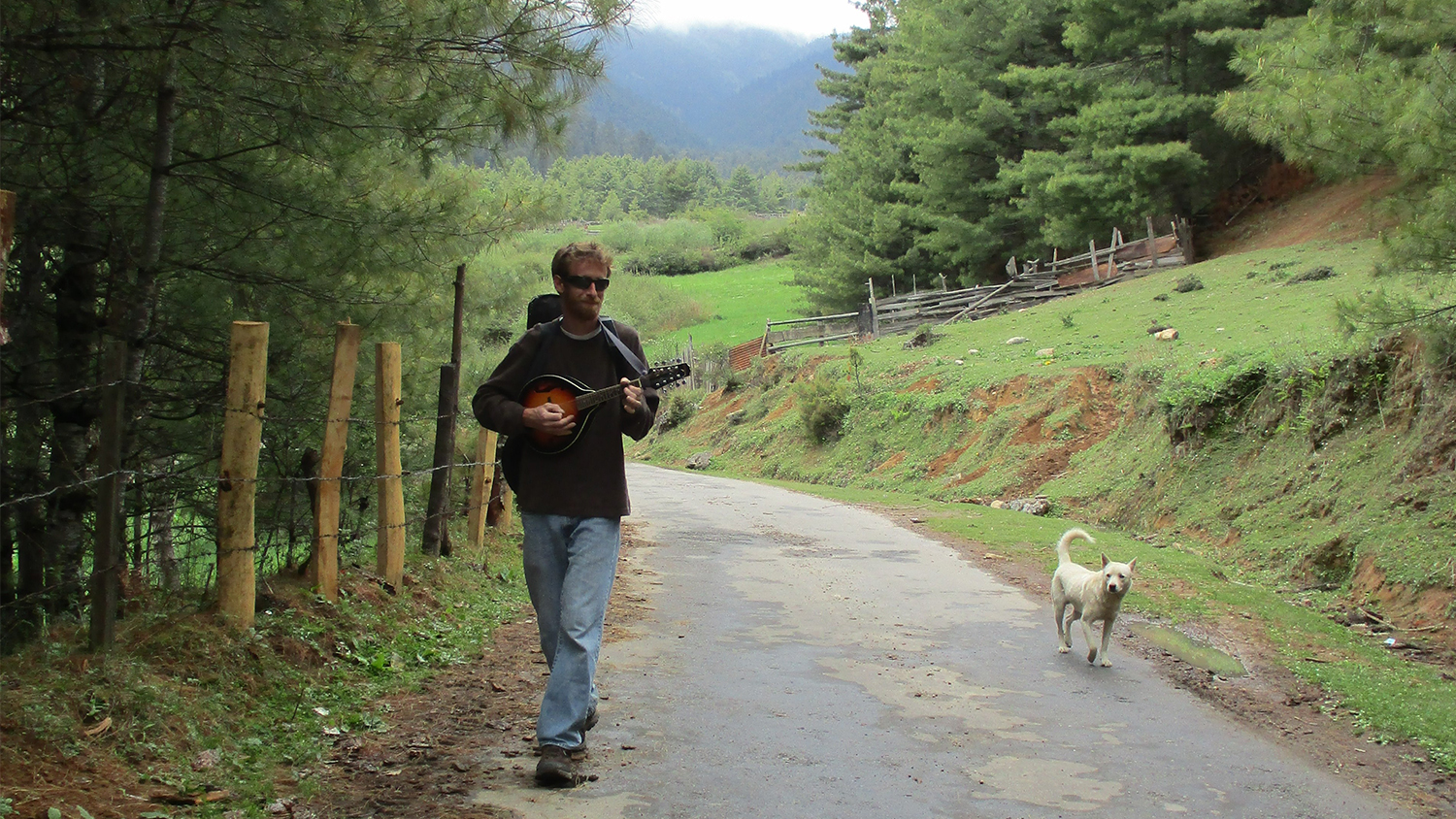 A young man carrying a backpack plays a string instrument while walking along a pathway next to a dog.