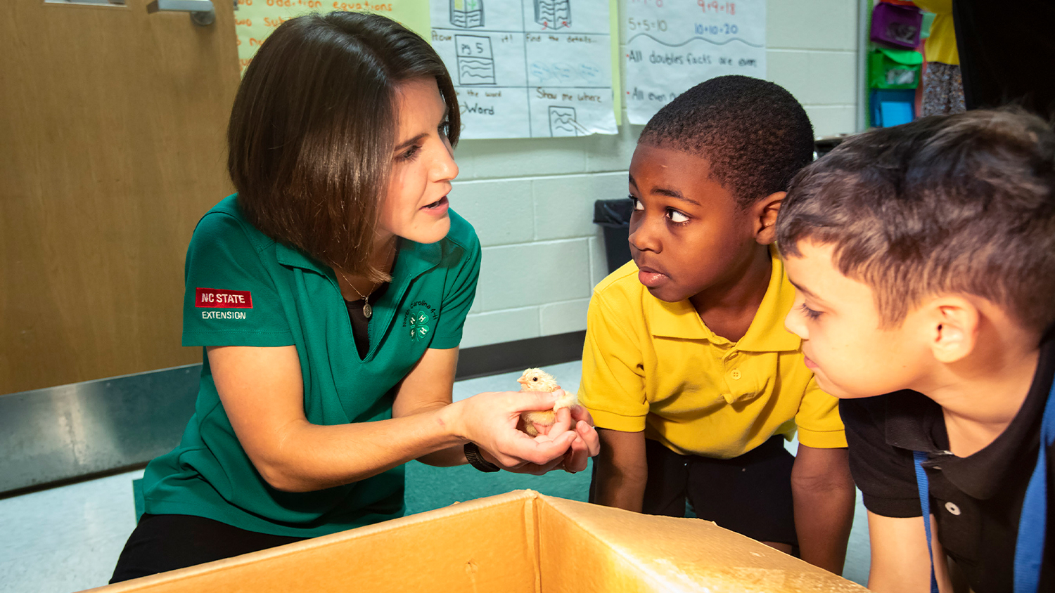 Extension 4-H agent Catherine Shelley holds a chick for students Naquez Cole and Landon Davis