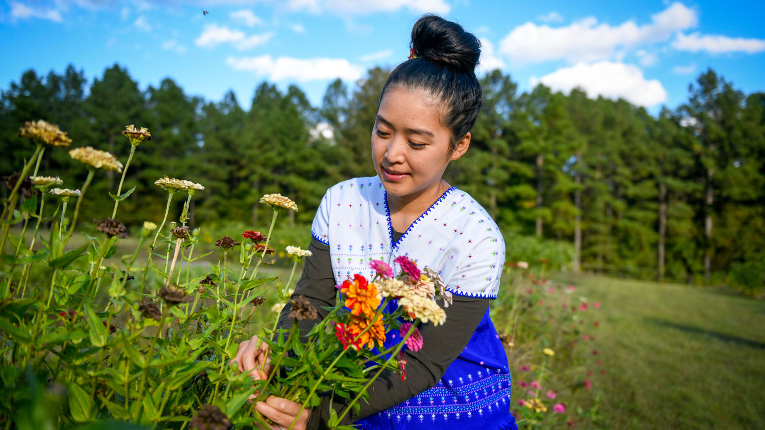 A woman picking flowers