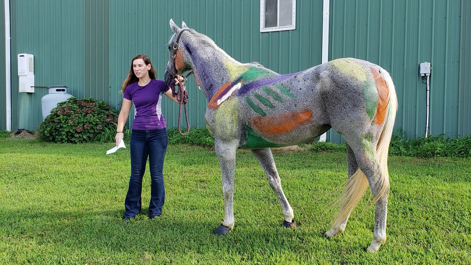 Woman with horse painted to identify muscles