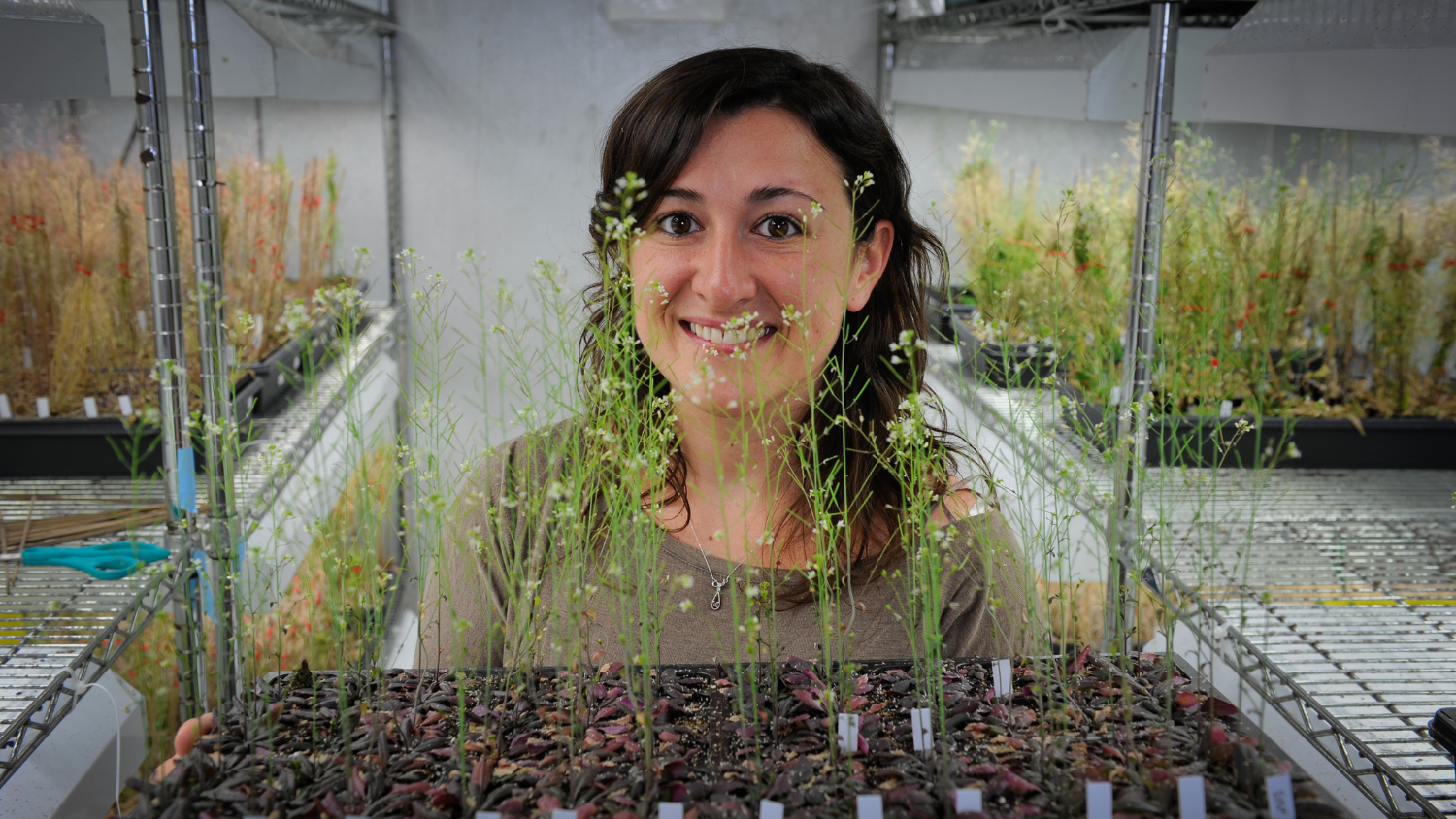 Woman standing behind plants in a lab