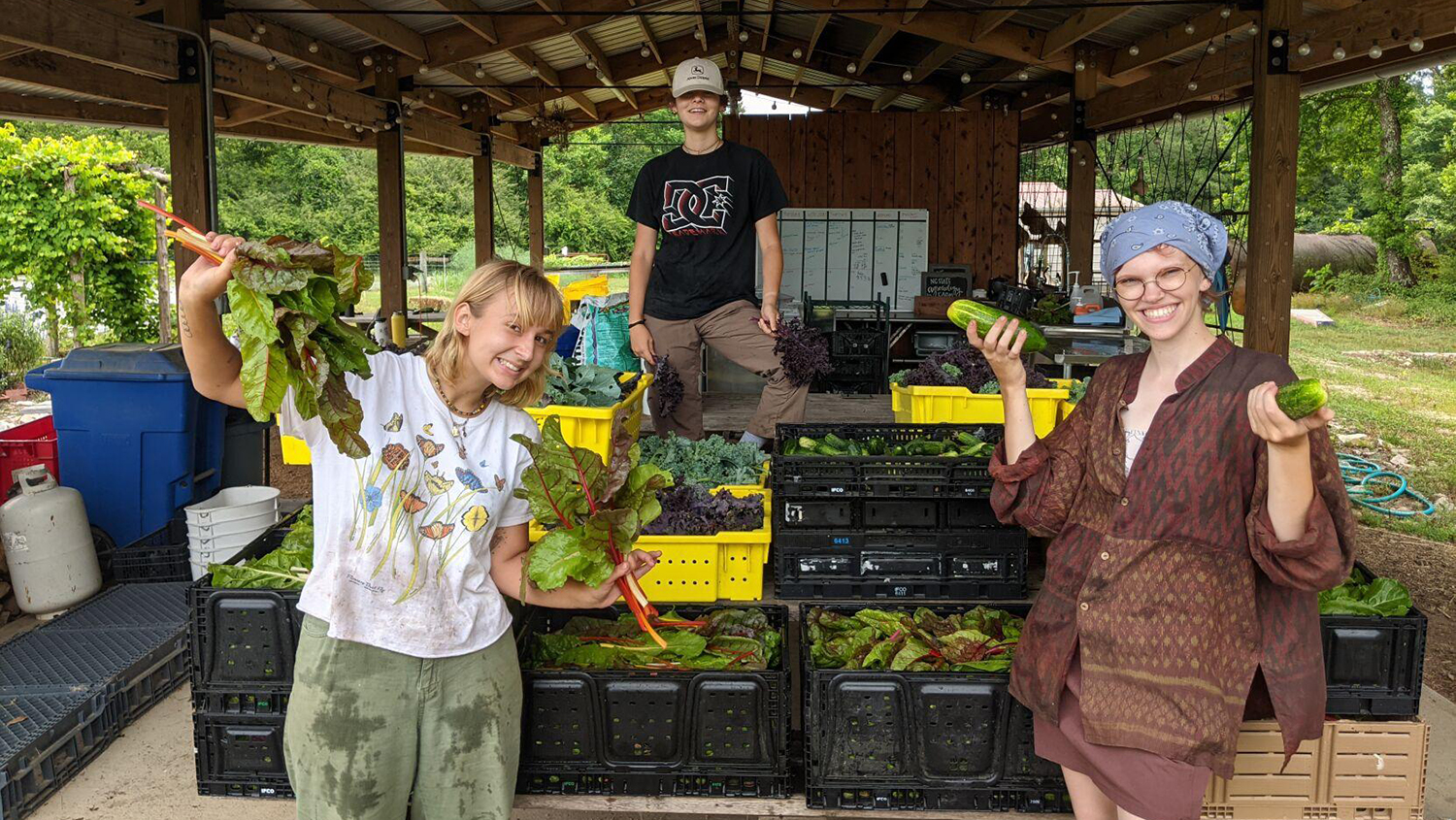 Three students surrounded by vegetables