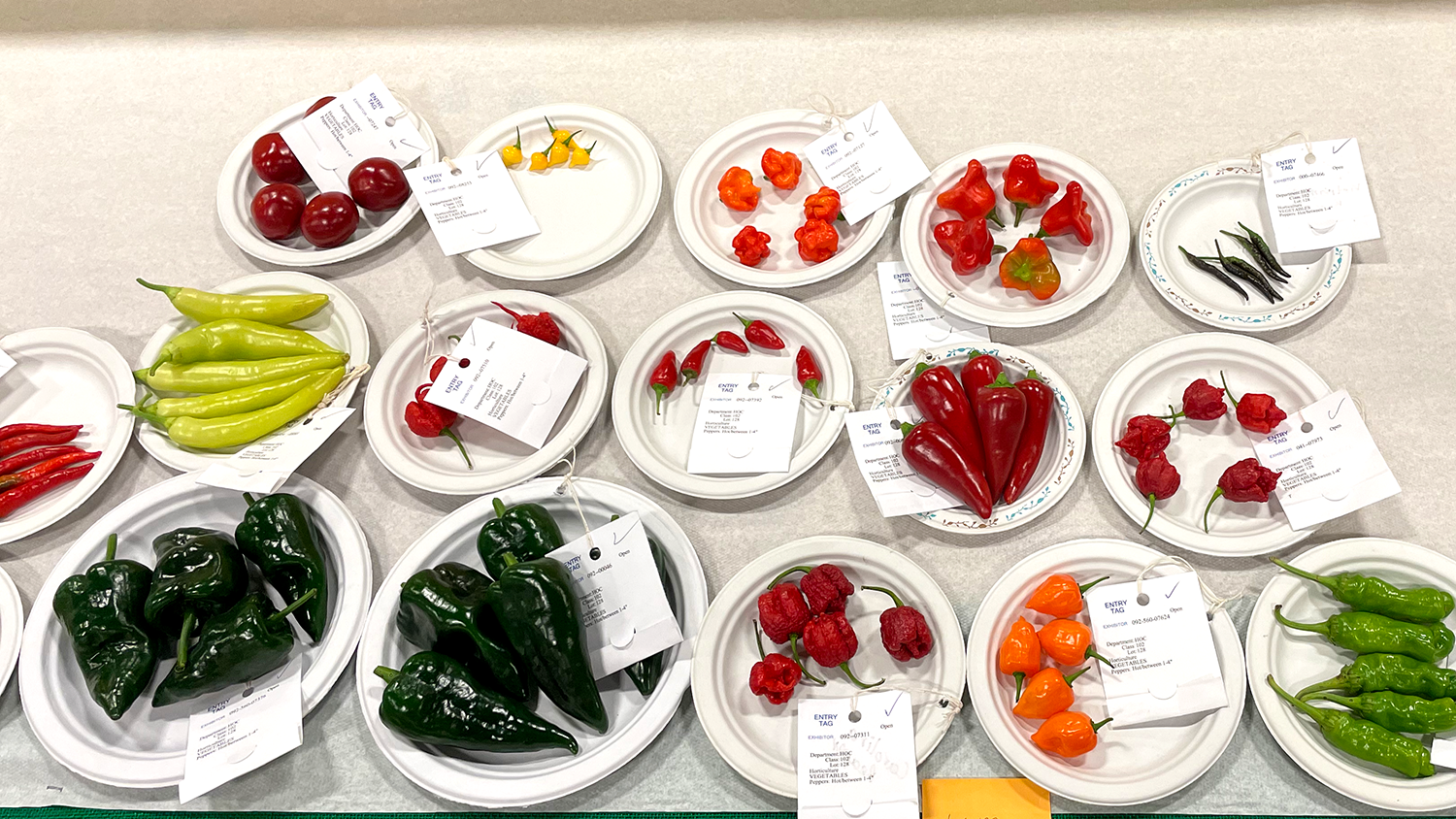 Plates of different varieties of hot peppers