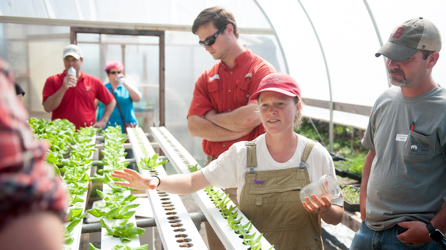 NC Farm School - people in a greenhouse.