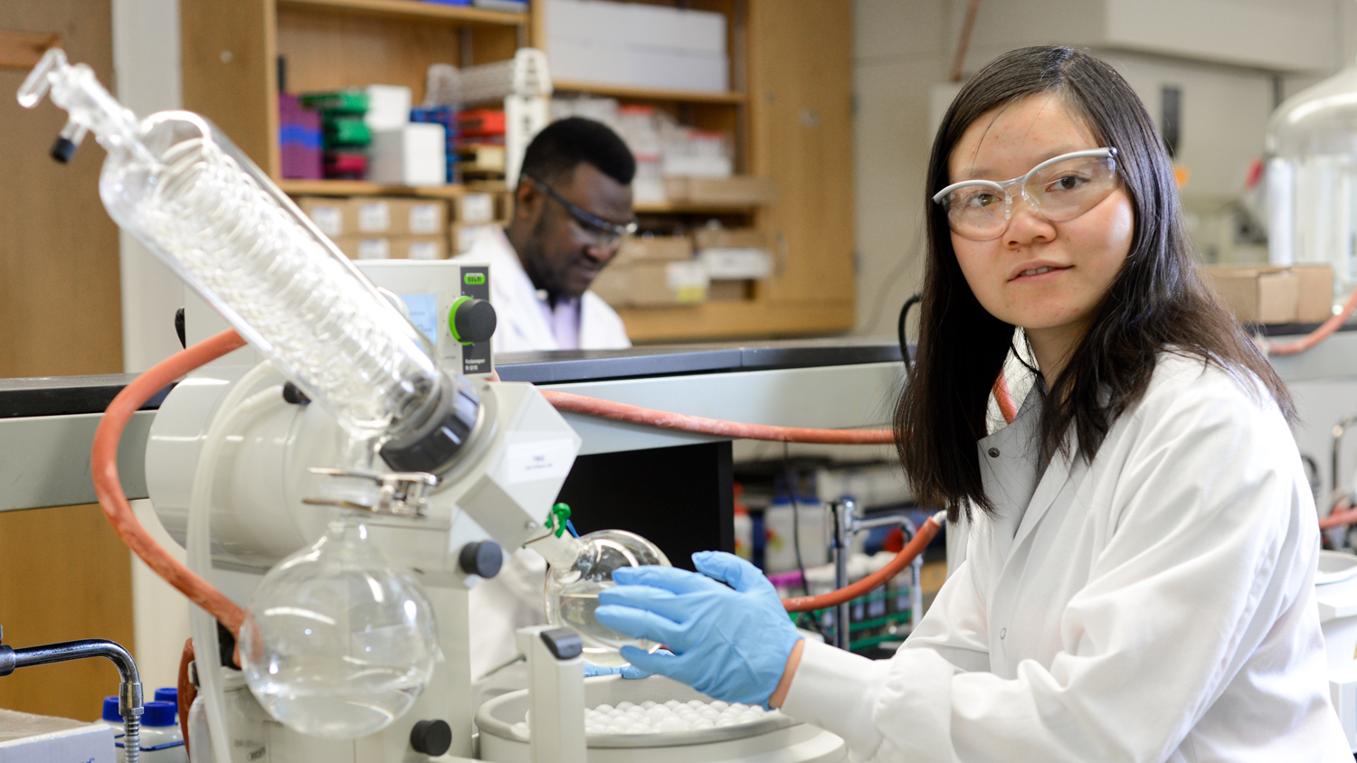 Graduate student working in lab