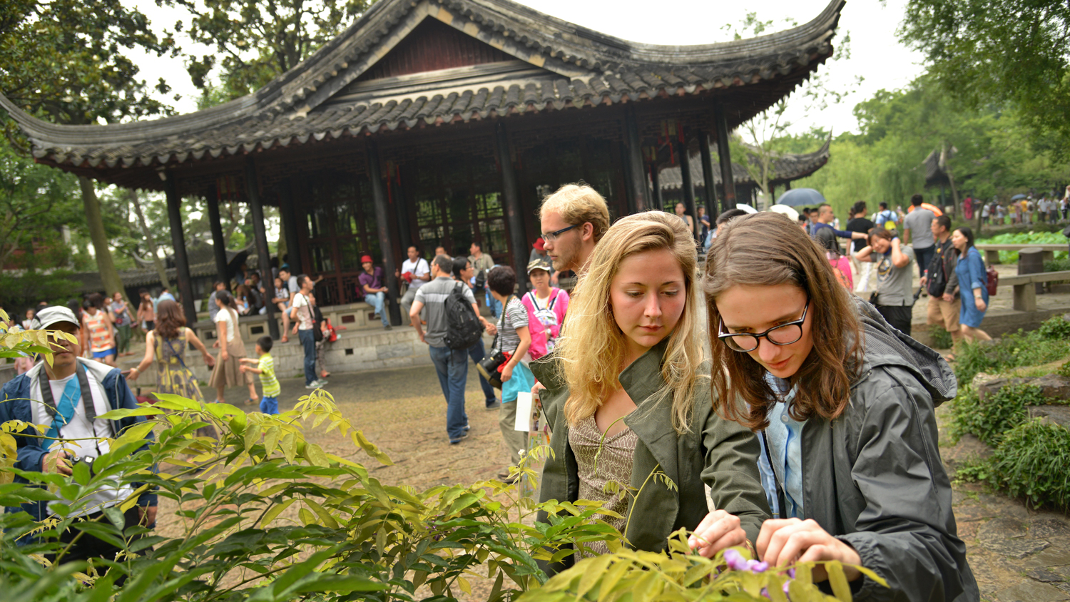 Students look at plants in China