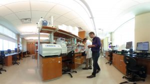 Two scientists in a laboratory