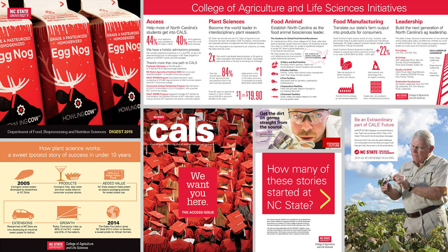 Collage of examples of CALS Communications print work