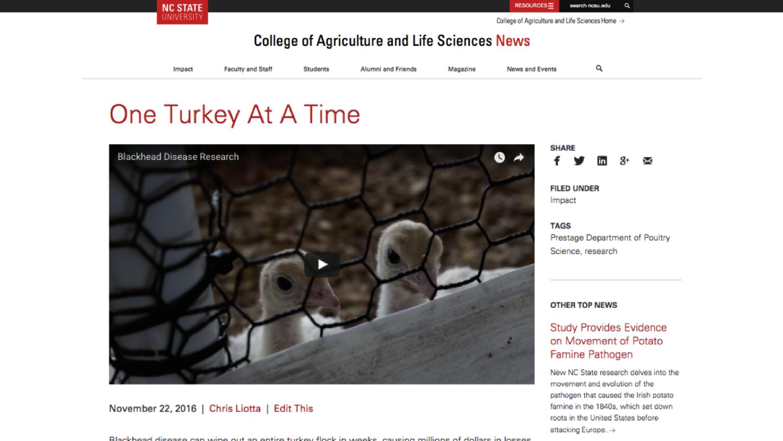 screenshot of CALS news page