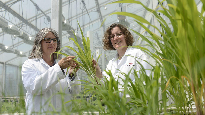 CALS Magazine Scientists Dorith and Anna