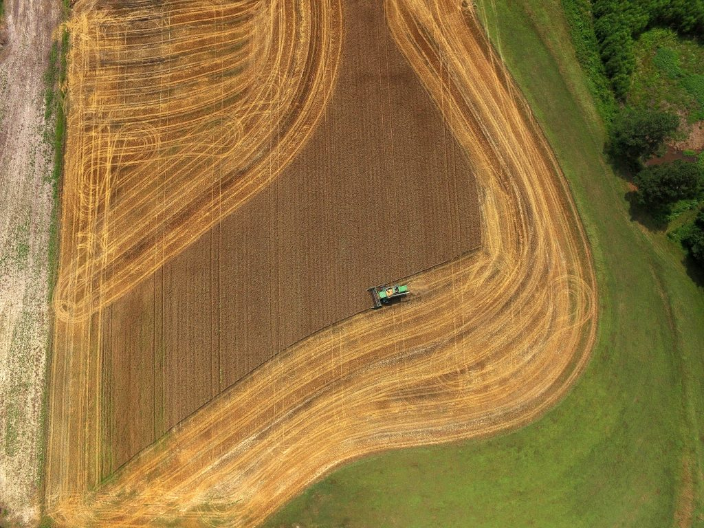 CALS Magazine Drone Photo Wheat Field From Above
