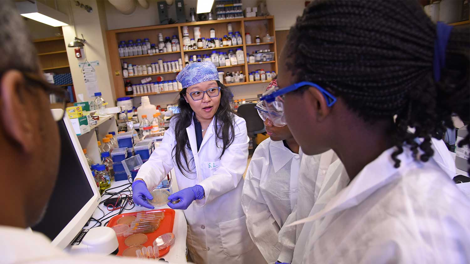 Young students working in a lab