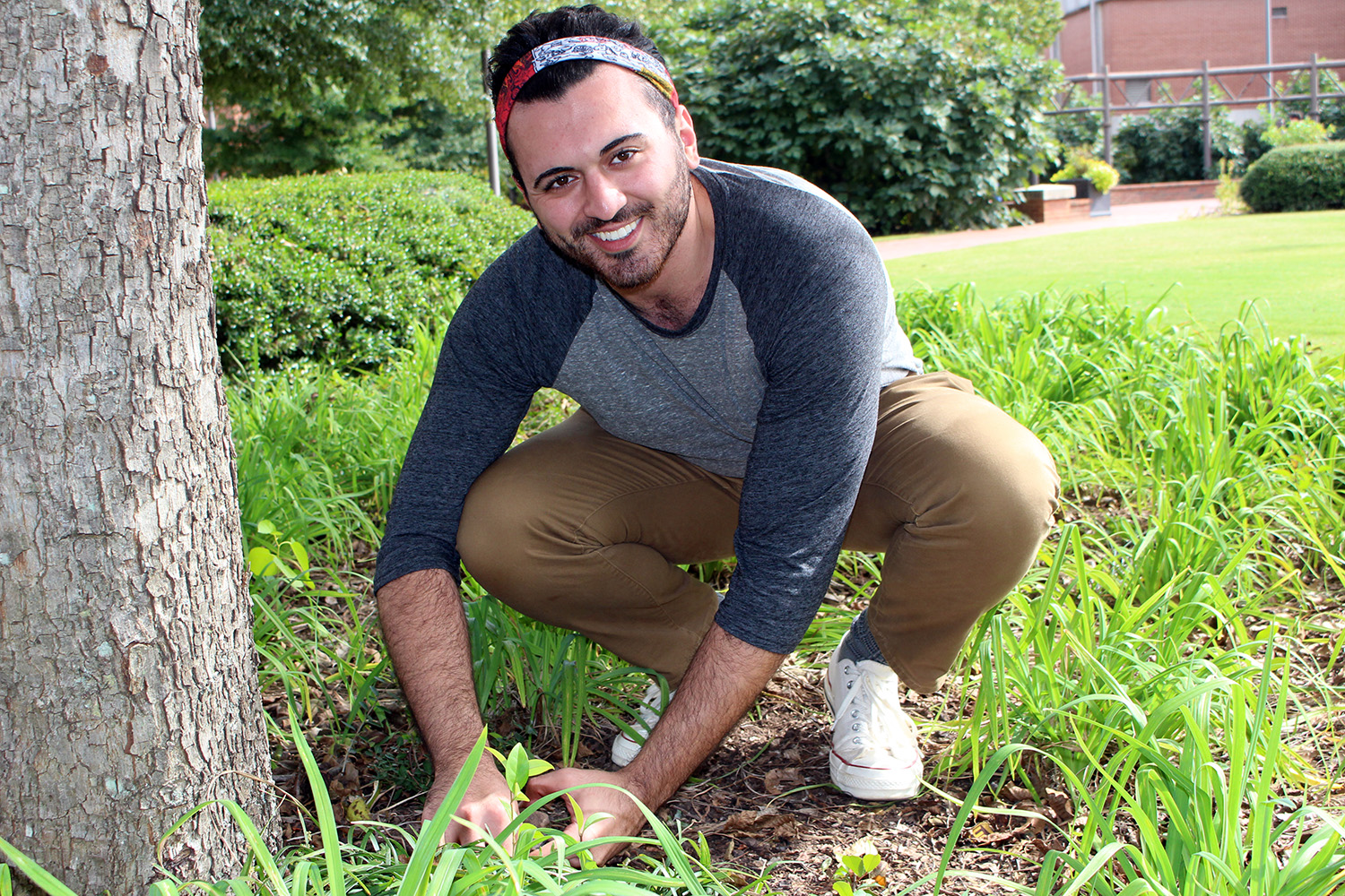 Student researcher looking for ants near a tree on NCState's campus
