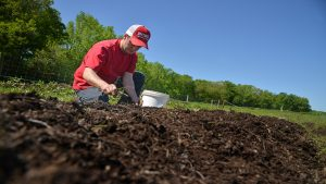 A farmer plants seeds in the soil for the upcoming season.