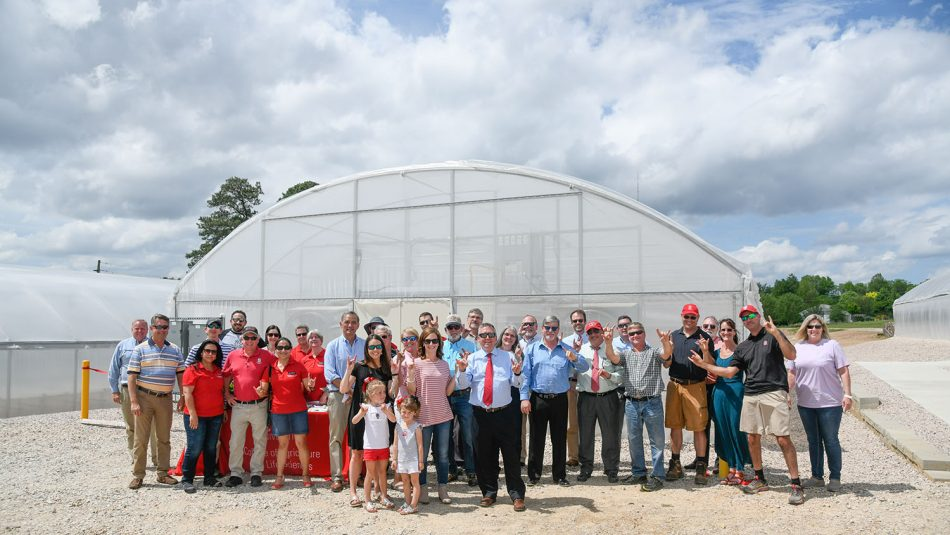 Celebration at the CALS greenhouses