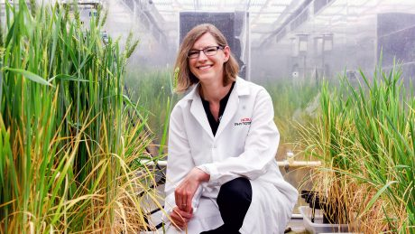 Photo of Amy Grunden in NCState's Phytotron.