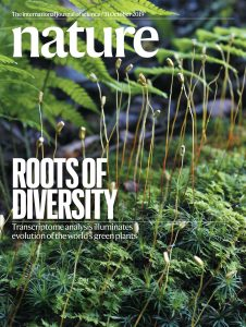 Cover of the October 31 Issue of Nature magazine